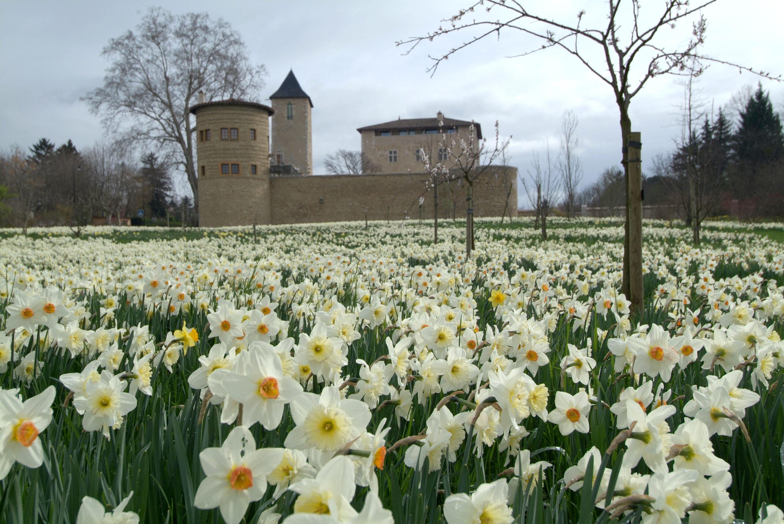 chateau de Saint-Bernard